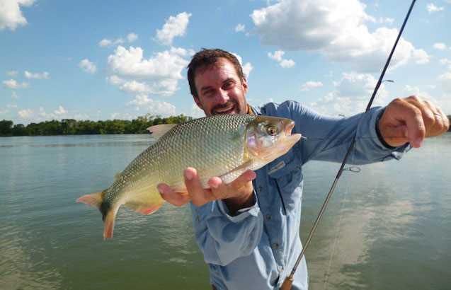 Argentine Parana Gal Pac Voyages de pêche
