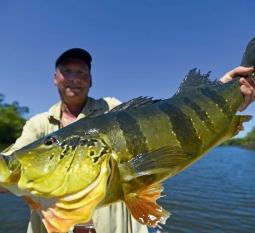 Amazonie Slid Pac Voyages de pêche